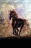 - cal în noapte -  _ http://laurapoanta.ro/Poze/carti/Cal_2012.jpg