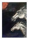 Visul cailor sălbatici _ http://laurapoanta.ro/Poze/carti/Laura_Poantă_Visul_cailor_salbatici.jpg
