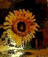 - soare _ http://laurapoanta.ro/Poze/carti/soare.jpg